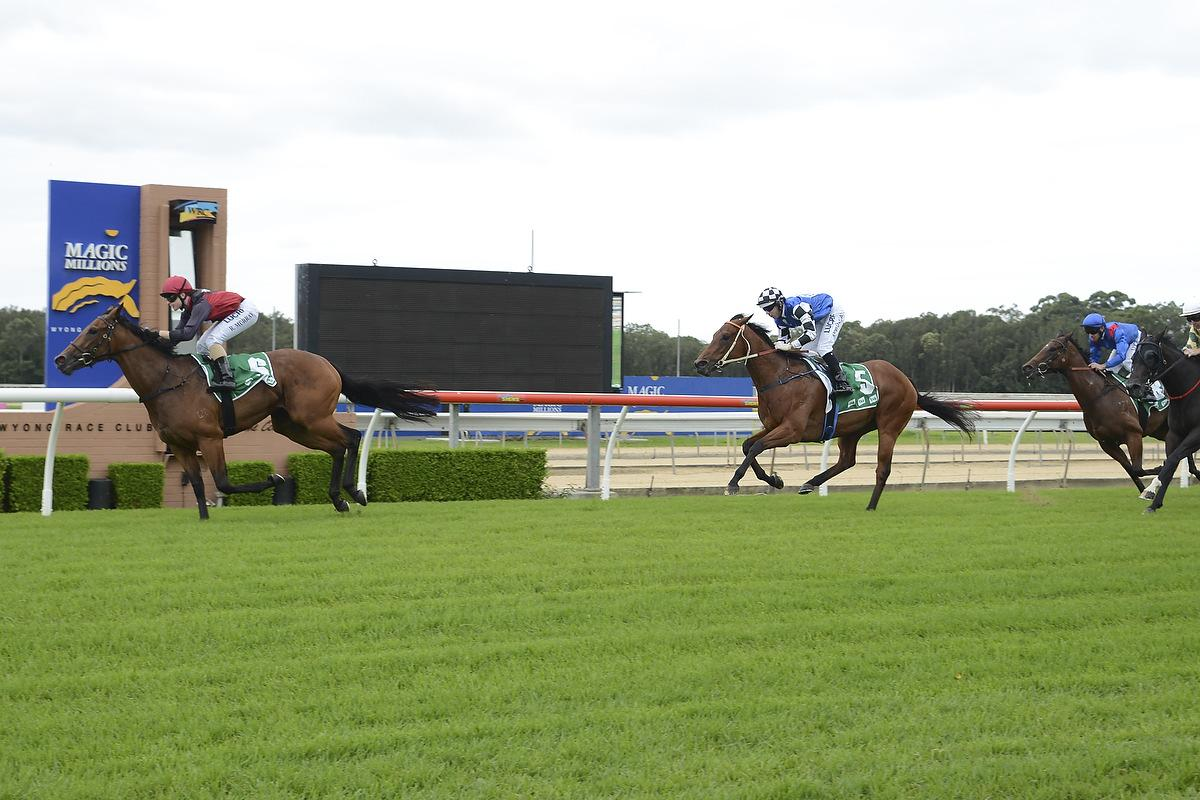 Nip Of Time – Bolting in at Wyong
