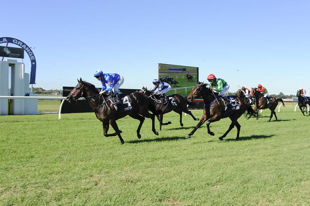 Double At Kembla On Saturday