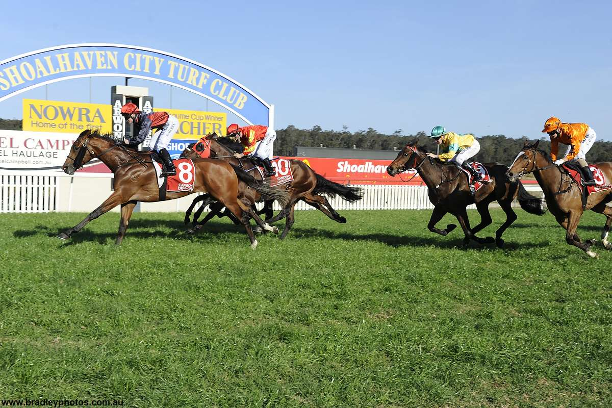 China Plate Smashes Rivals