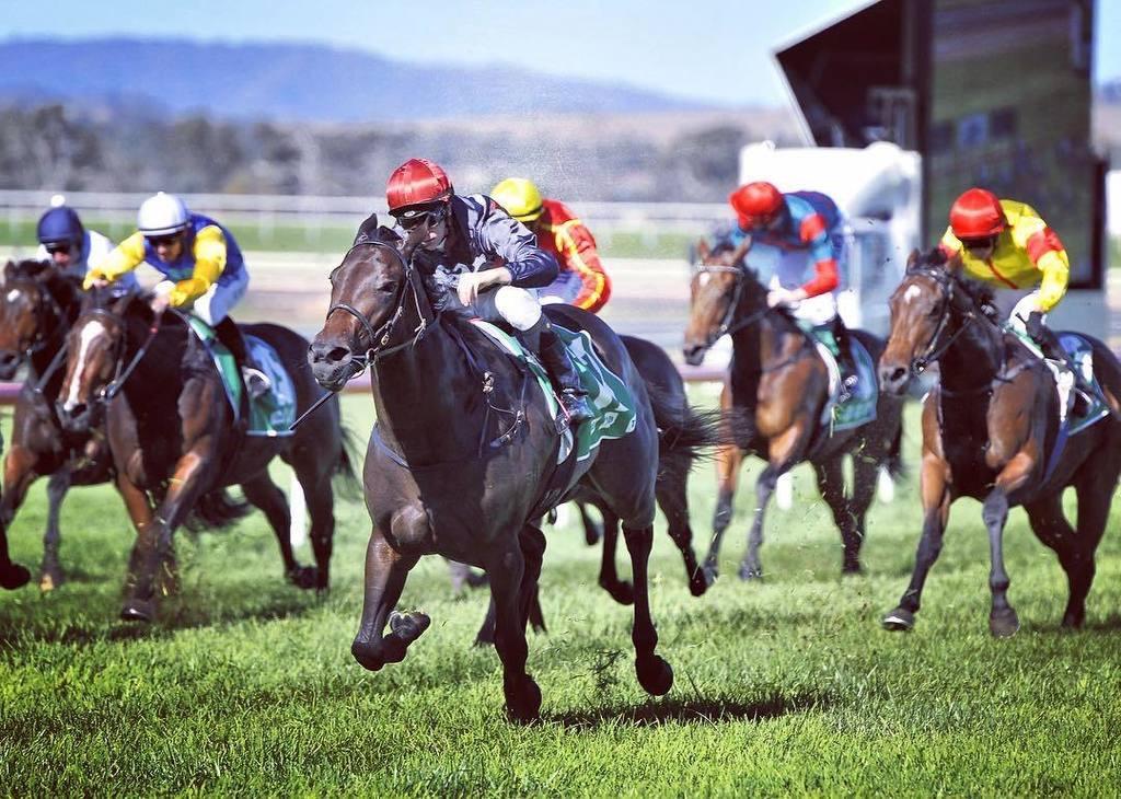 Manaya Wins Woodlands Stakes